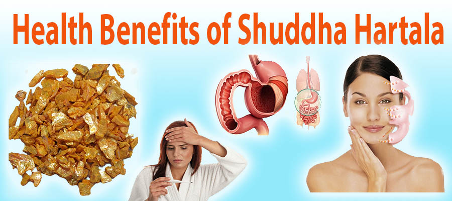 health benefits of shuddha hartal23